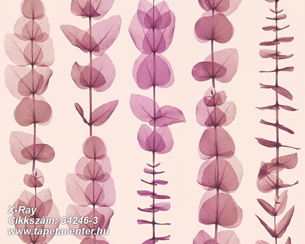 Absztrakt,csíkos,dekor,különleges motívumos,rajzolt,természeti mintás,bézs-drapp,lila,pink-rózsaszín,súrolható,illesztés mentes,vlies tapéta
