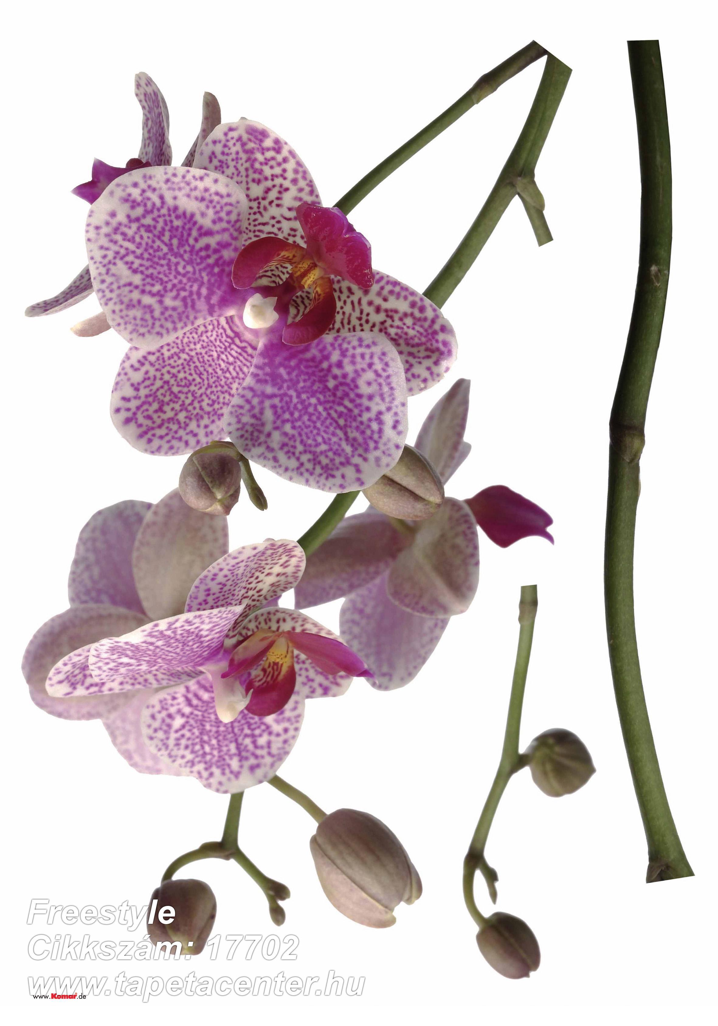 Virágmintás,fehér,lila,pink-rózsaszín,zöld,anyagában öntapadós falmatrica