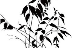 Fa hatású-fa mintás,különleges motívumos,rajzolt,retro,természeti mintás,virágmintás,fehér,fekete,gyengén mosható,vlies poszter, fotótapéta