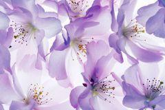 Fotórealisztikus,természeti mintás,virágmintás,fehér,lila,gyengén mosható,vlies poszter, fotótapéta