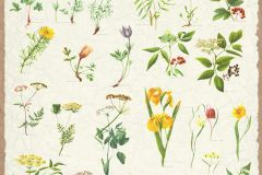 Gyerek,rajzolt,természeti mintás,virágmintás,barna,piros-bordó,sárga,vajszín,zöld,gyengén mosható,vlies poszter, fotótapéta