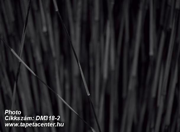 Természeti mintás,fekete,szürke,gyengén mosható,vlies poszter, fotótapéta