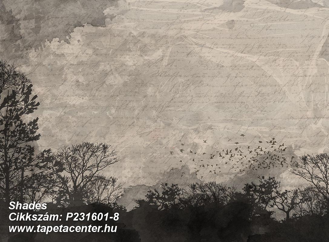 Fa hatású-fa mintás,feliratos-számos,különleges motívumos,rajzolt,természeti mintás,bézs-drapp,fekete,szürke,gyengén mosható,vlies poszter, fotótapéta