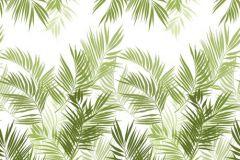Rajzolt,természeti mintás,fehér,zöld,gyengén mosható,vlies poszter, fotótapéta